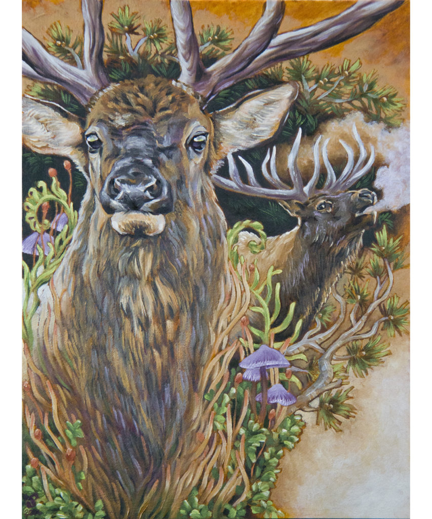 Elk Spirit - Julia L Powell